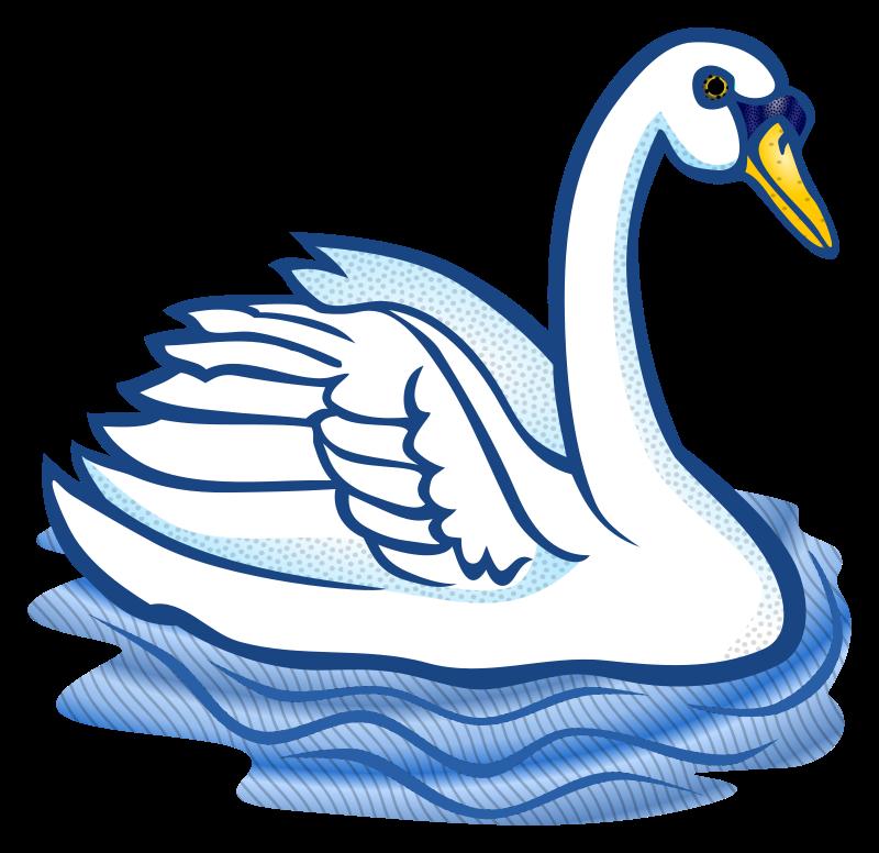 Swan clipart IMAGE swan MEDIUM (PNG) Clipart
