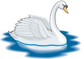 Swan clipart Swan Swan k7uf0y Cute clipart