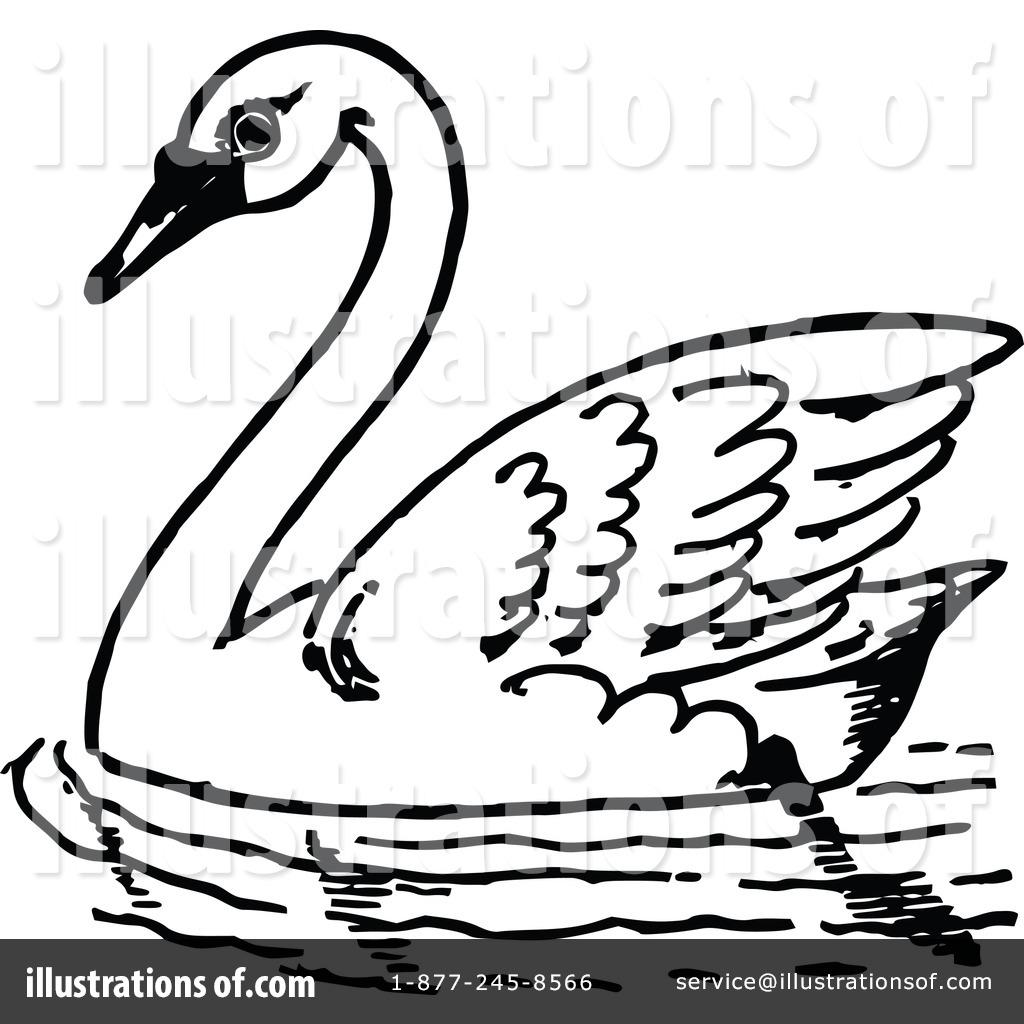 Black Swan clipart animal By Prawny #1113667 Illustration Illustration