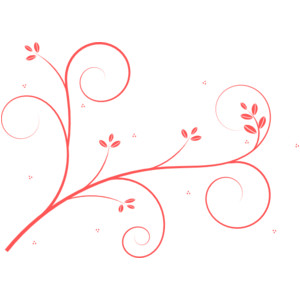 Swirl clipart coral Pink Polyvore clip art Swirl
