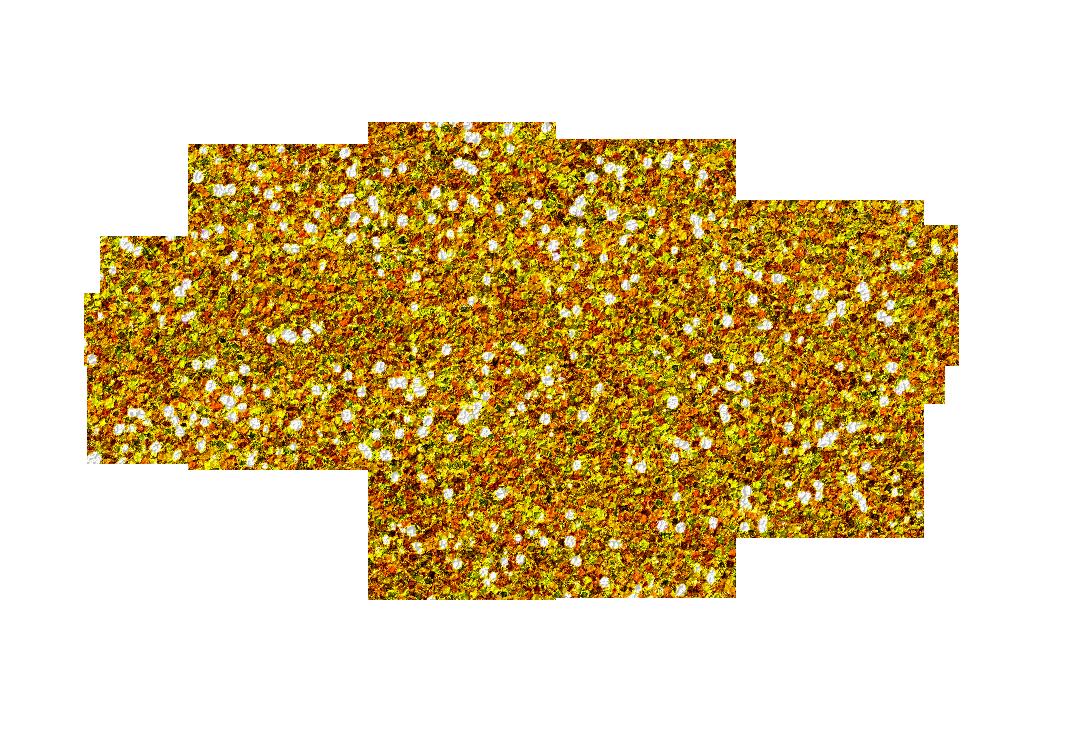 Swirl clipart magic Swirls cliparts Magic Zone Cliparts