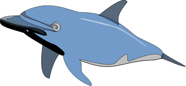 Bottlenose Dolphin clipart nosed Image Art as: clip vector