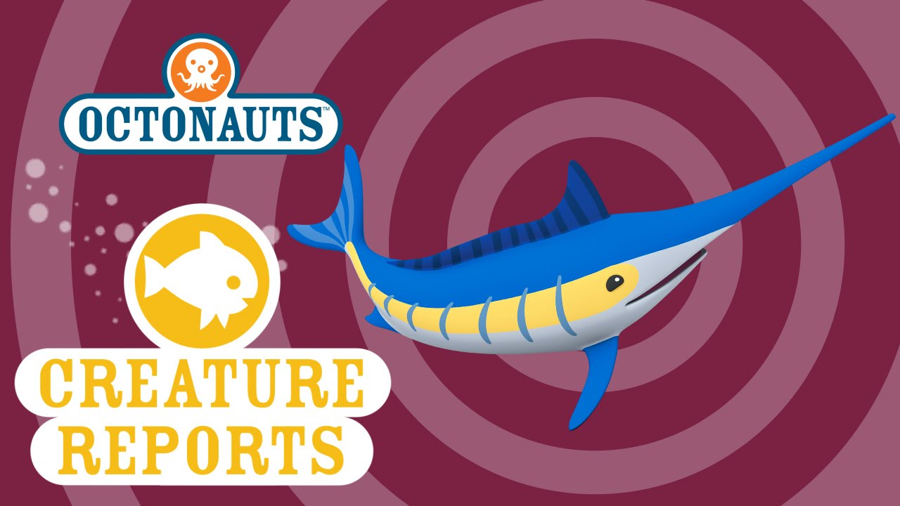 Barracuda clipart octonauts Creature YouTube Creature Swordfish Octonauts: