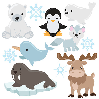 Caribou clipart artic animal Clipart clipart arctic  for