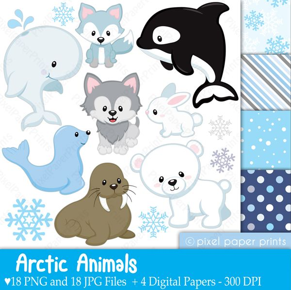 Baby Animal clipart arctic animal Clipart Pinterest newsletters & invitations