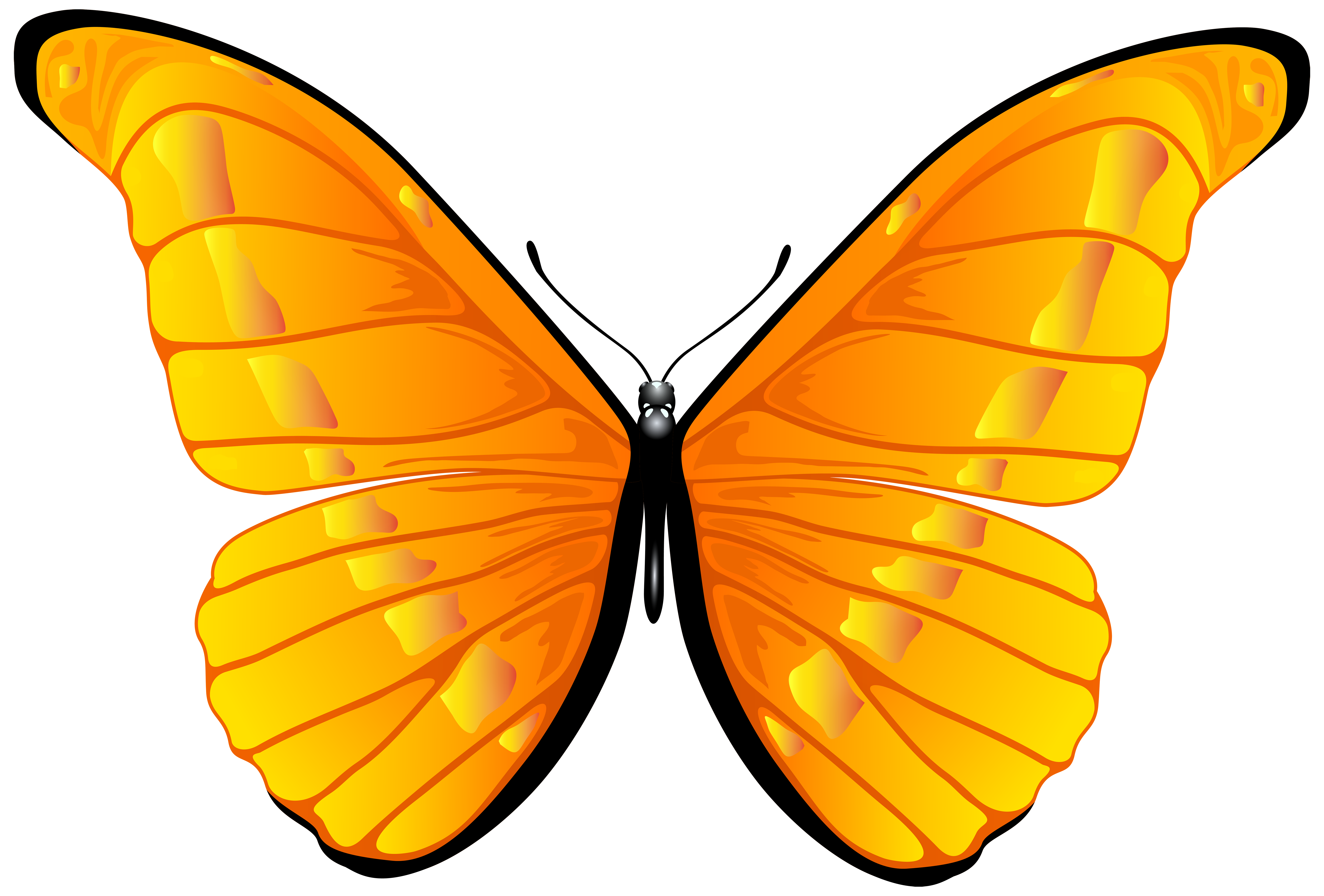 Bug clipart orange butterfly 49 Clipart Clipart Clipart Butterfly
