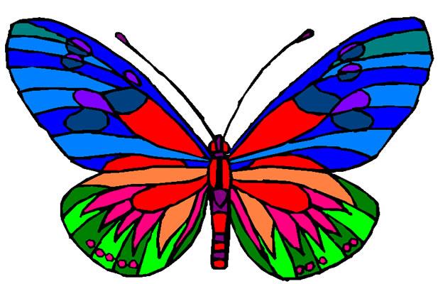 Symmetry clipart butterfly Butterfly Technology CCTC Exemplar: Projects