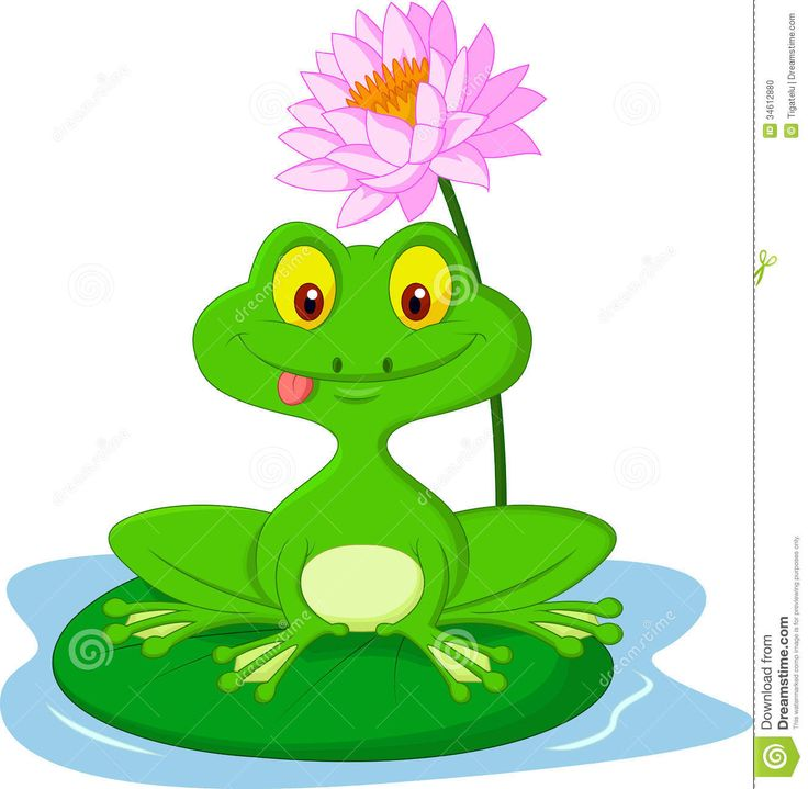 Symmetry clipart frog hopping Sitting about on A best