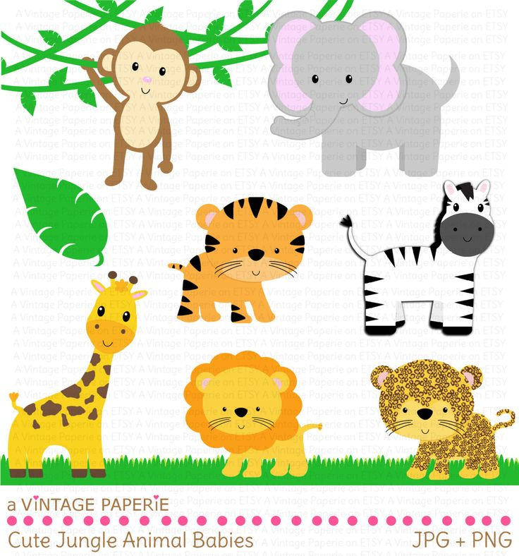 Wildlife clipart baby shower safari Clipart Large zoo animals on