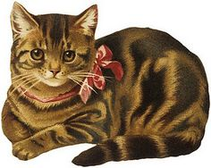 Tabby Cat clipart Clip Victorian Cat Kitty a