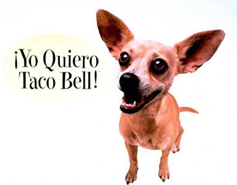 Tacos clipart spanish culture Culture Great Moments Latino Taco