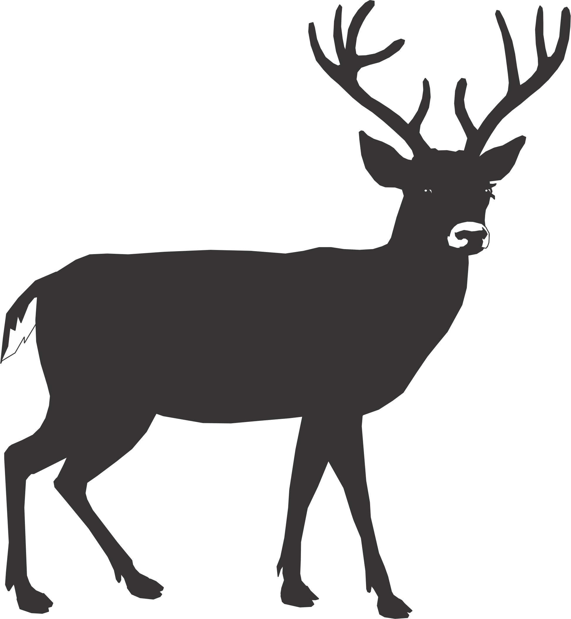 Buck clipart dear Free Clipart Deer Clipart Clipart