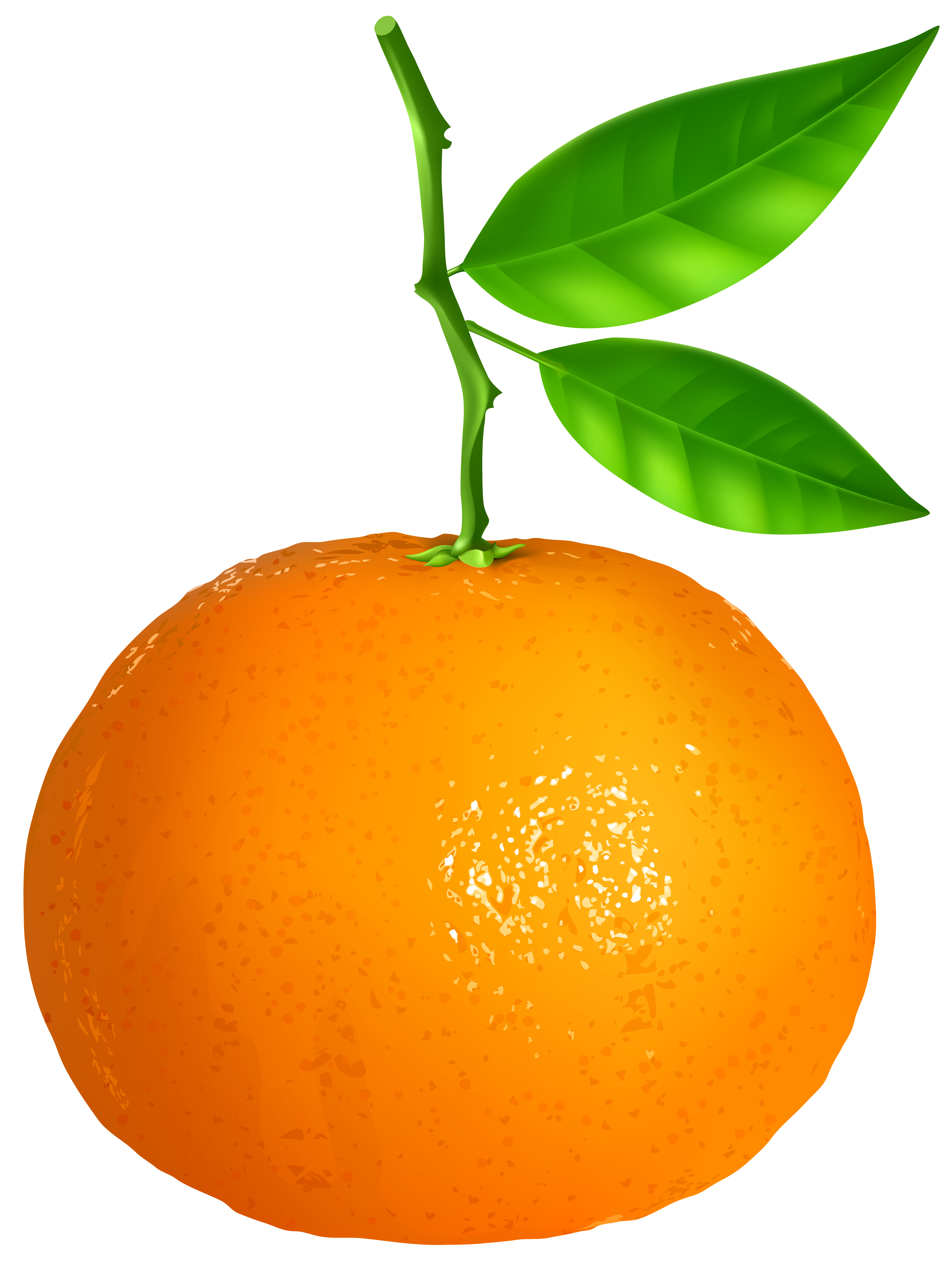 Tangerine clipart Clip full Transparent View PNG