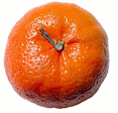 Tangerine clipart Art Download Clip Tangerine Tangerine