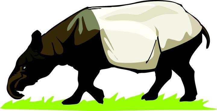 Tapir clipart Grazing Free Tapir Clipart Tapir