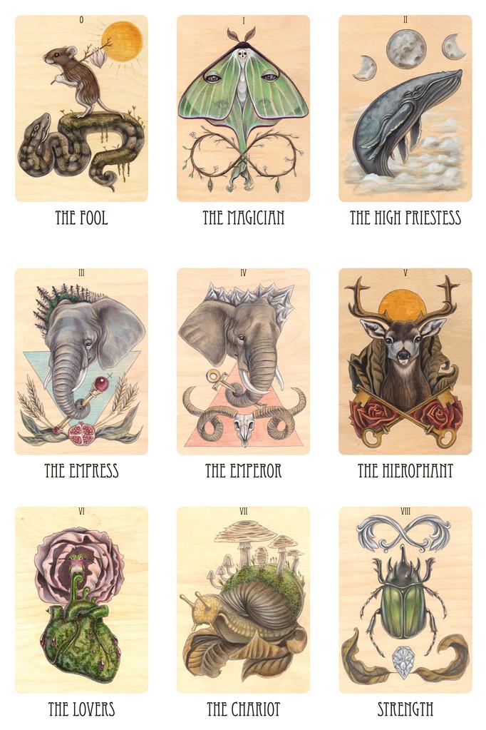 Tarot Cards clipart modern Skullgarden so skullgarden beautiful tarot