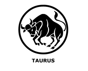 Taurus clipart Clipart Taurus  300x243 Resolution