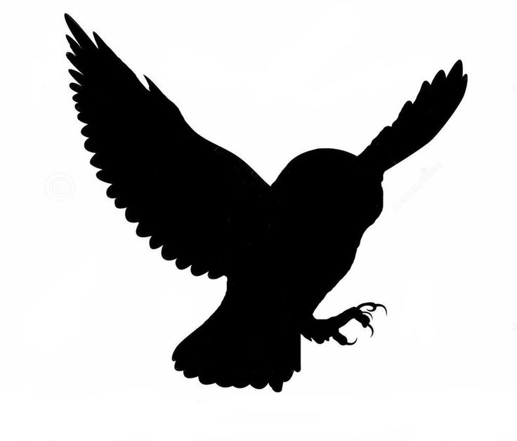 Owlet clipart silhouette Owl Search silhouette owl Pinterest