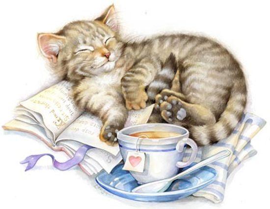 Teacup clipart kitty Leesa Whitten ClipartKids on Leesa