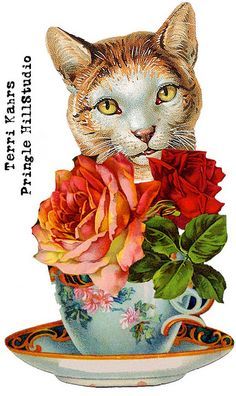 Teacup clipart kitty Free Clipart & cat