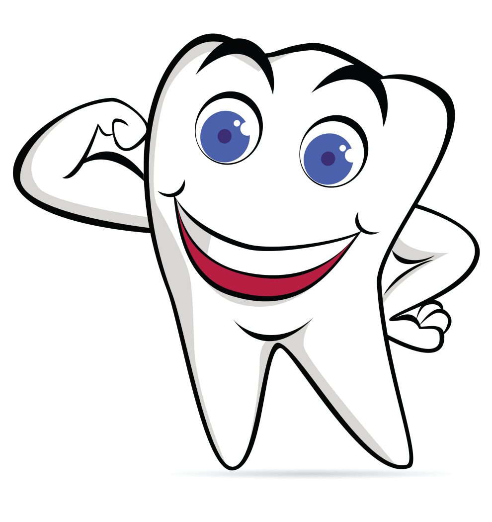 Teeth clipart strong tooth Fixed Bridges ajax restore teeth