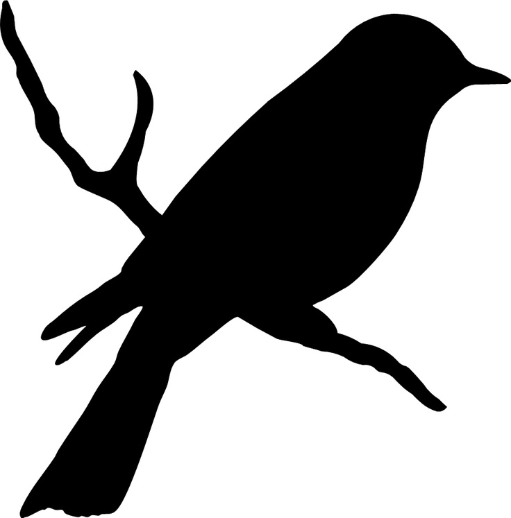 Pigeon clipart vector Bird on silhouette ideas branch
