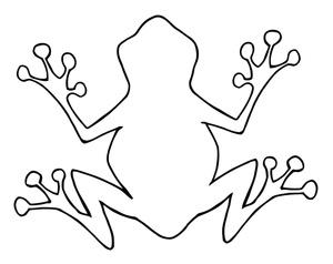 Amphibian clipart outline Outline Ideas Pinterest Party frog