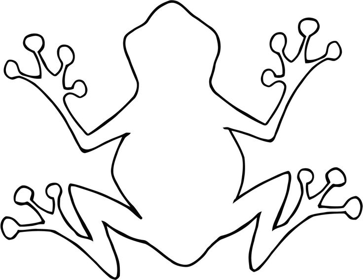 Amphibian clipart outline Frog template on Outline ideas