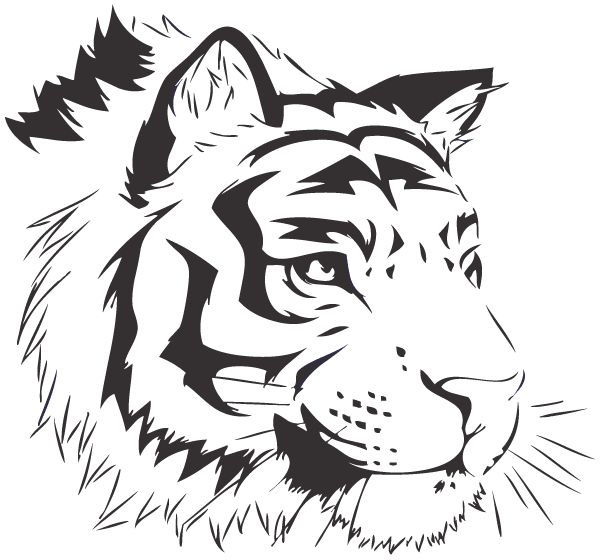 Templates  clipart tiger #4
