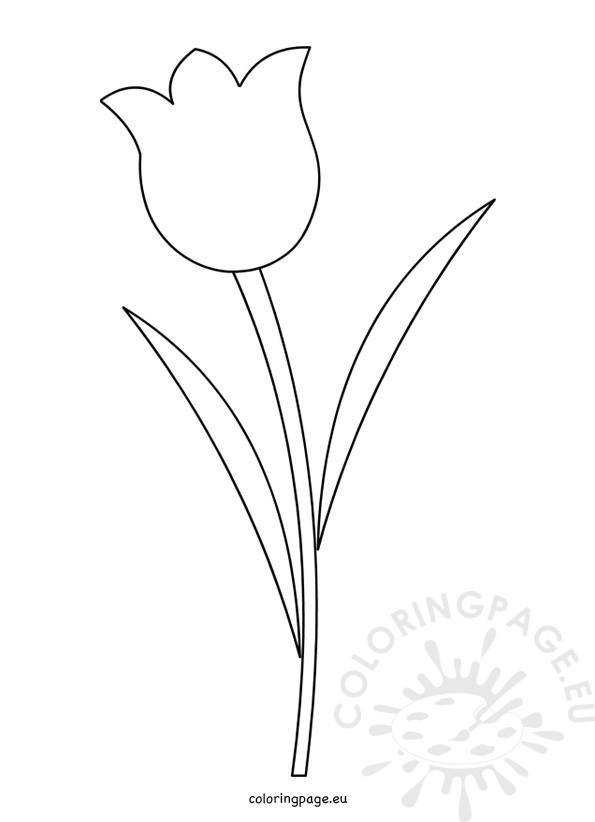 Templates  clipart tulip #7