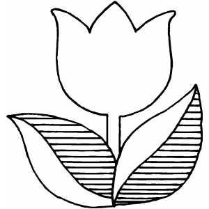 Templates  clipart tulip #12