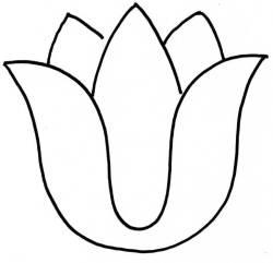 Templates  clipart tulip #4