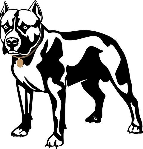 Pit Bull clipart black and white Clipart white dog black photo