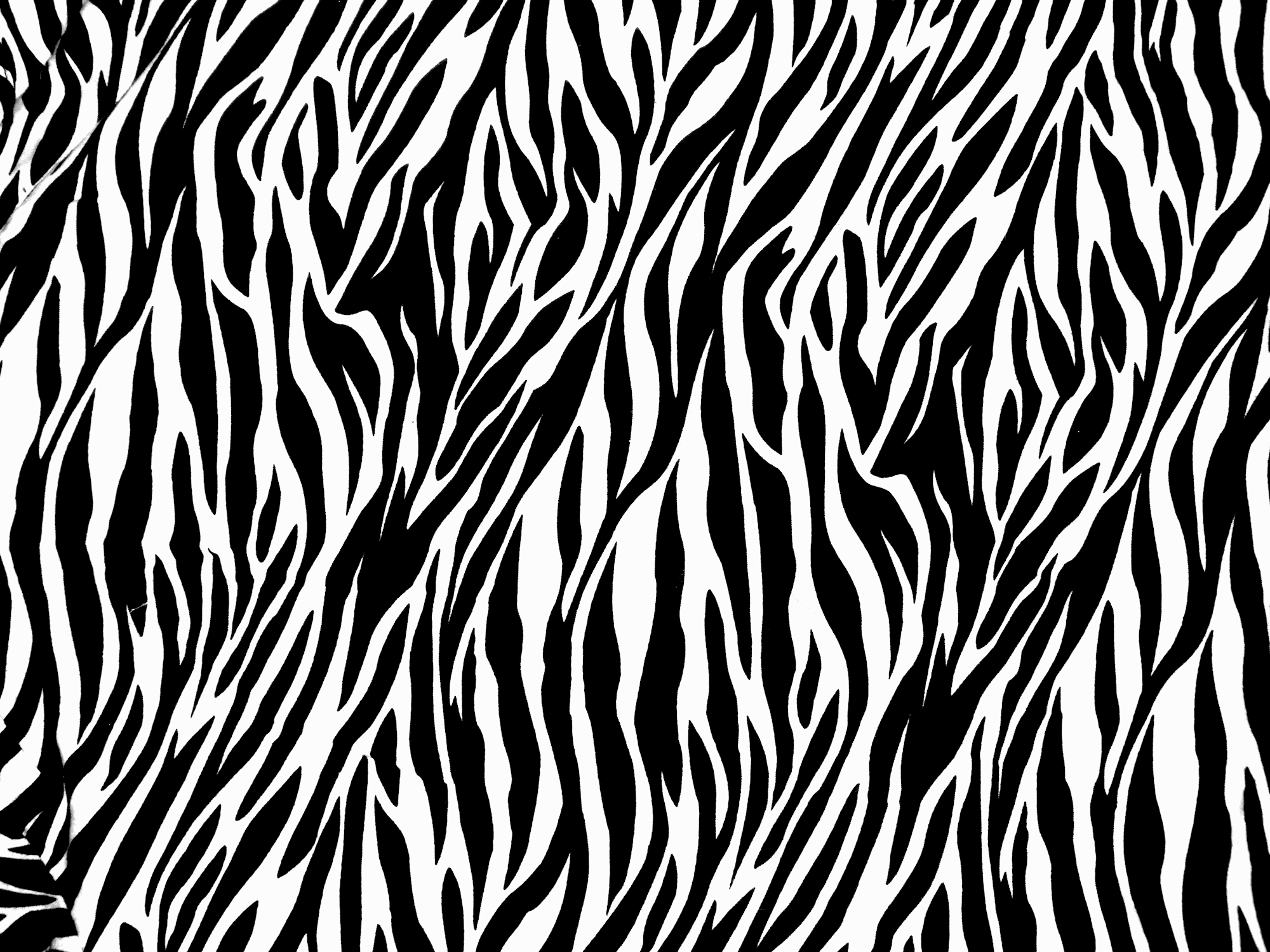 Tiger Print clipart black and white #2