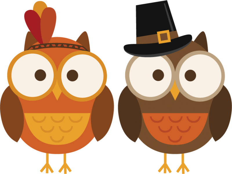 Owl clipart pilgrim Owls day free Thanksgiving pdclipart