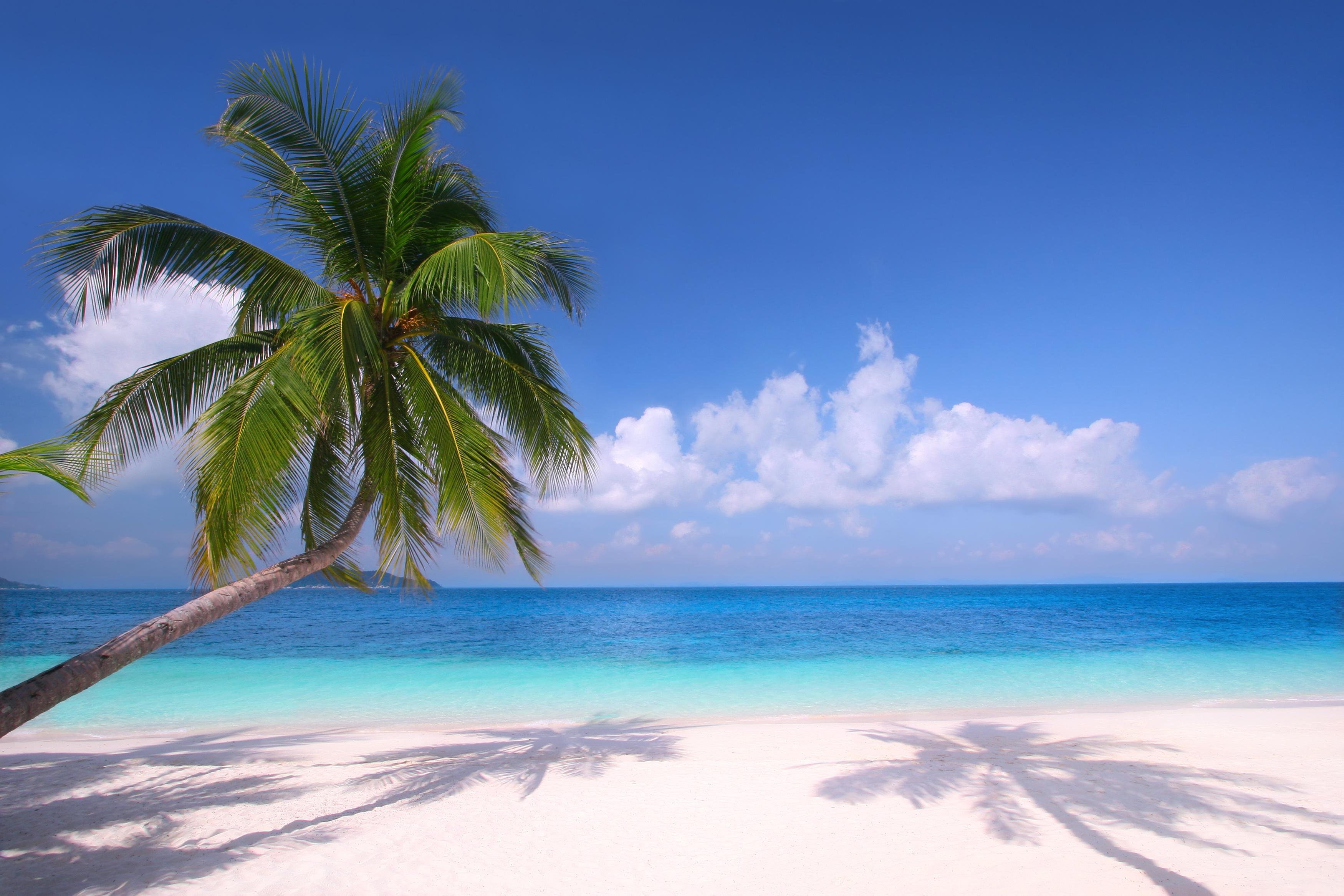 Sea clipart beach background #13