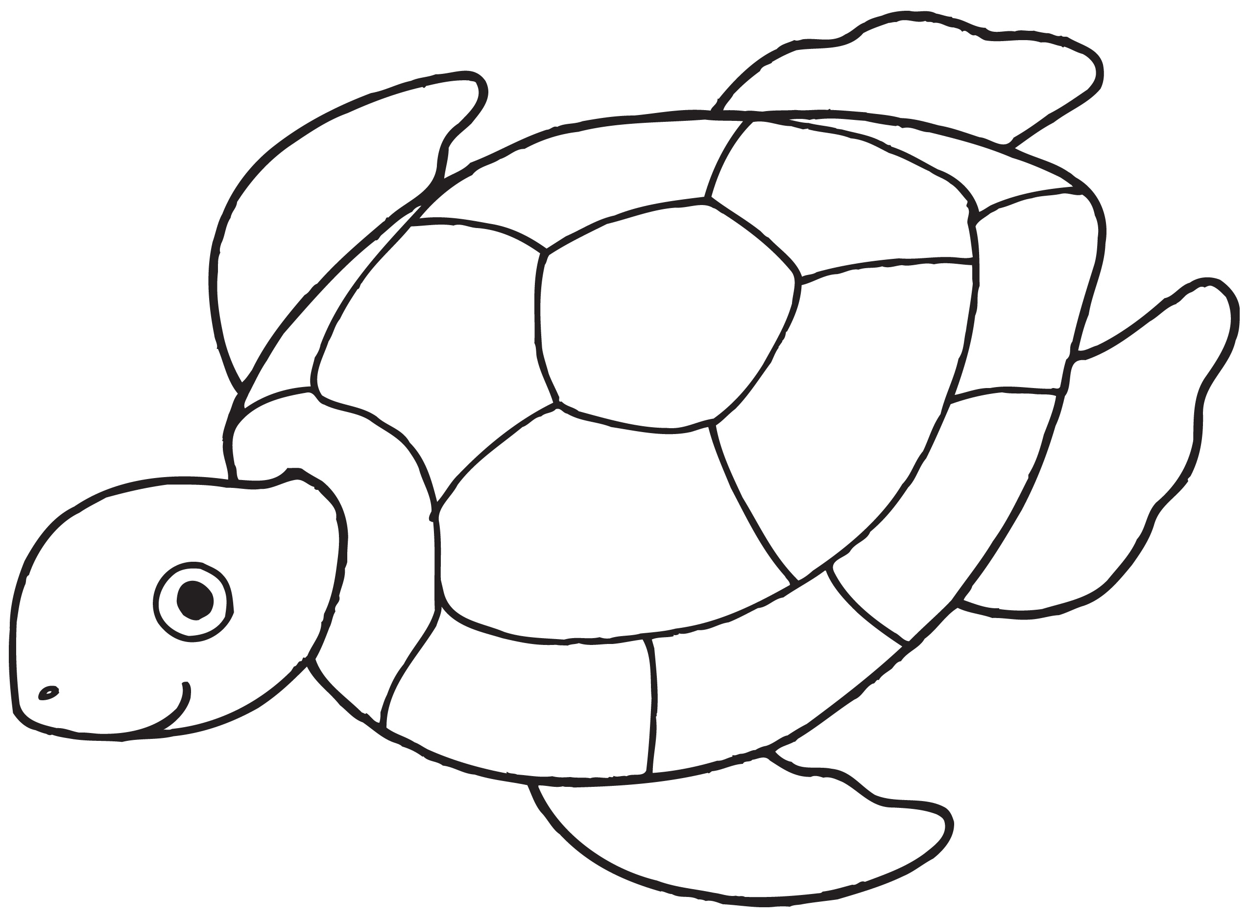 Tortoise clipart coloring page #9