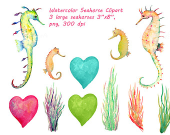 Seaweed clipart seagrass #15
