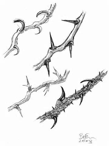 Thorns clipart Free on clipart of thorns