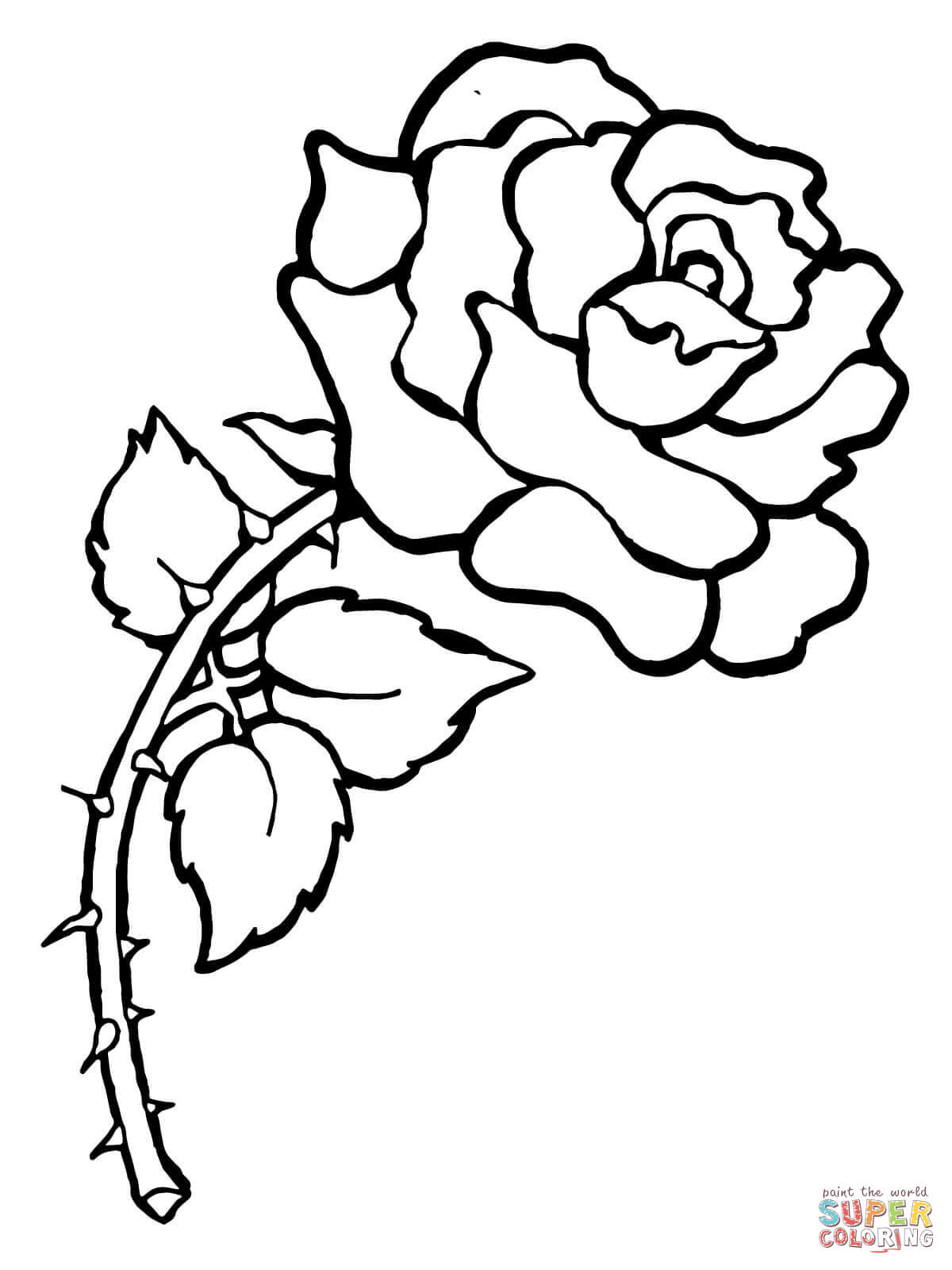 Drawn rose bush thorn outline Coloring Click Free coloring the