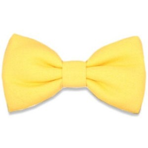 Yellow clipart bowtie Tie for Polyvore Bows Yellow