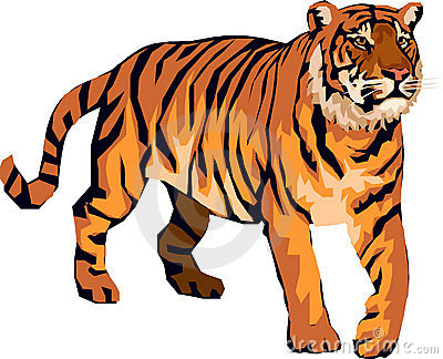Tiger clipart Cartoon Free Art kid Tiger