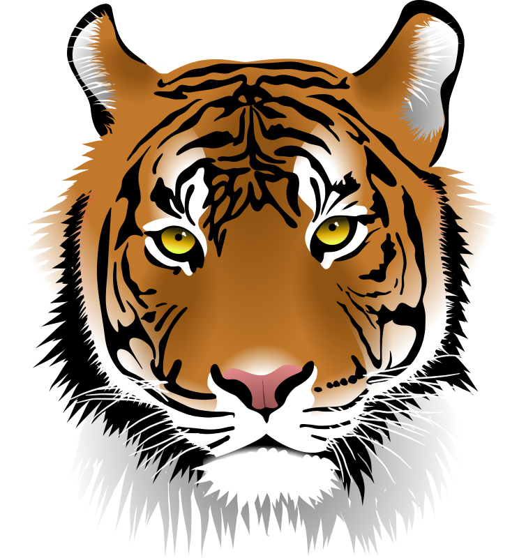 Tiger clipart Free Clip Art Domain Use