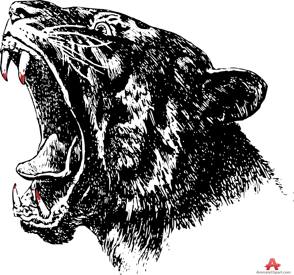 Tiger clipart angry #8