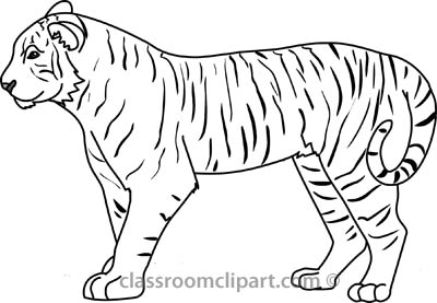 Tiiger clipart black and white #10