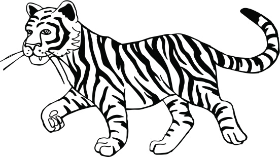Tiiger clipart black and white #9