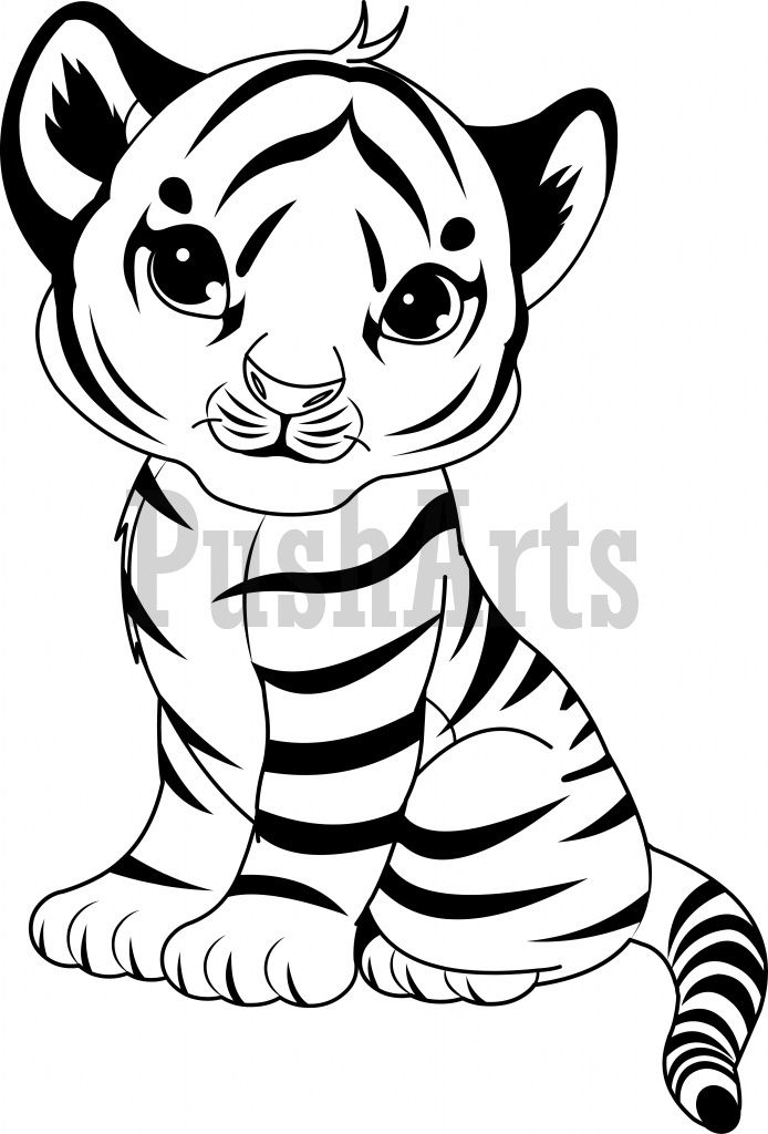 Tiiger clipart coloring book #12