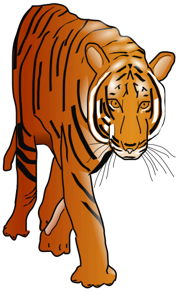 Bengal clipart chinese tiger Clip 3 clip clipart art