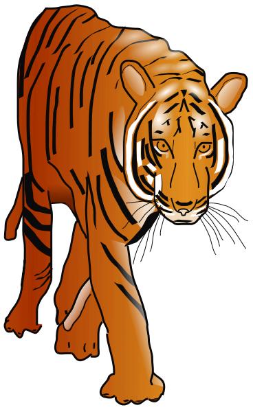 Big Cat clipart bengal tiger Tiger art free clipart com