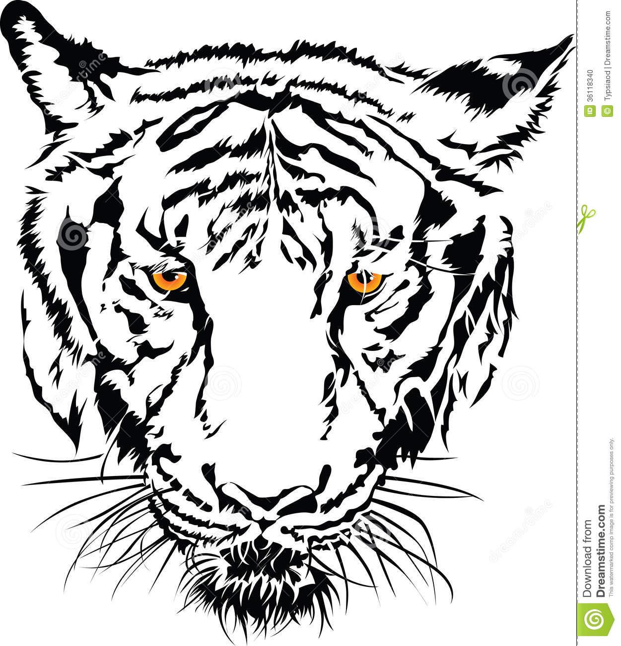 Tigres clipart drawn #3